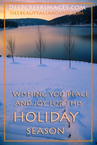 web HOLIDAY SEASON GREETING CARD