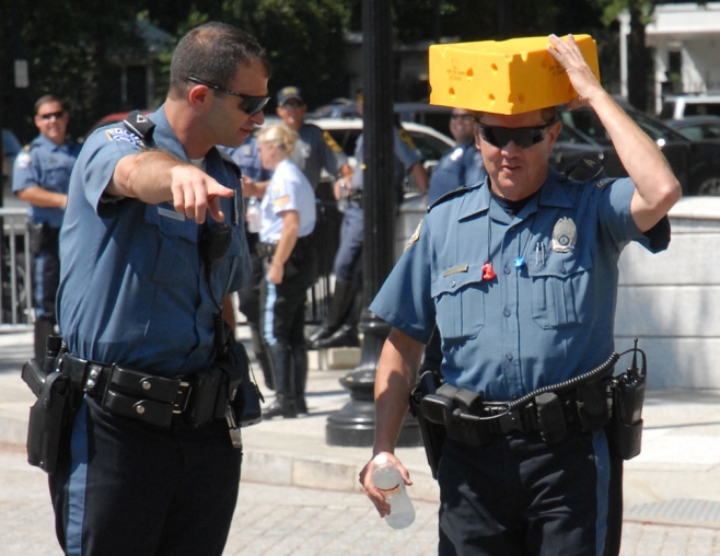 web cheese heads