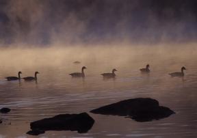 deep creek lake fog rob paine