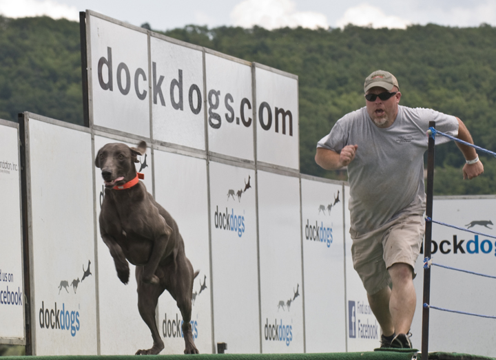 web chase dog rob paine