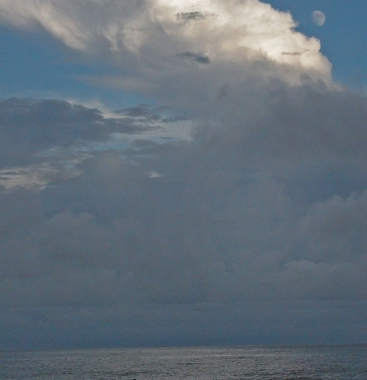 Rob Paine Myrtle Beach
