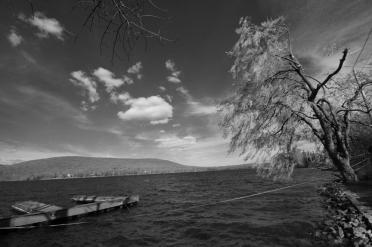 Rob Paine Deep Creek Lake