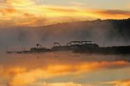 web four fog