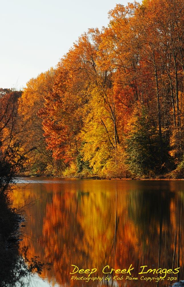 web  fall colors copy