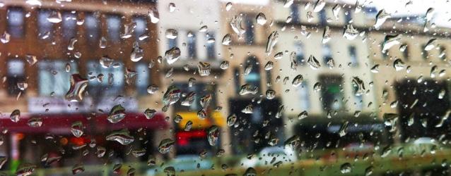 web rain drops