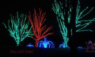 web 11 lights