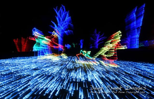web  8 lights