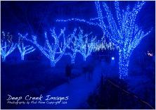 web lights five