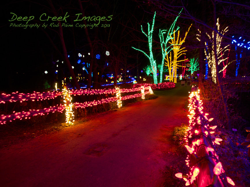 Lighting Up The Holiday Season At Meadowlark Botanical Gardens In Vienna Va I See Beauty All