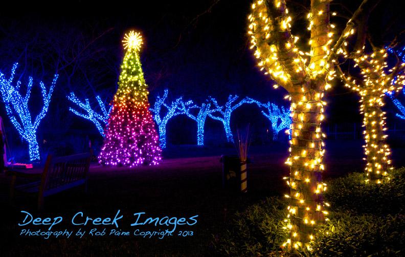 Lighting Up The Holiday Season At Meadowlark Botanical Gardens In Vienna, Va .