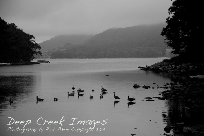 Photo by Rob Paine, Deep Creek Images