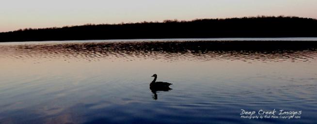 rob paine burke lake