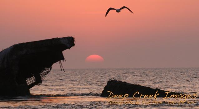 rob paine sunset beach