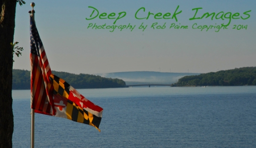 paine flag over dcl