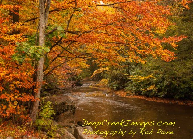 Photo by Rob Paine/ Deep Creek Images- Copyright 2014
