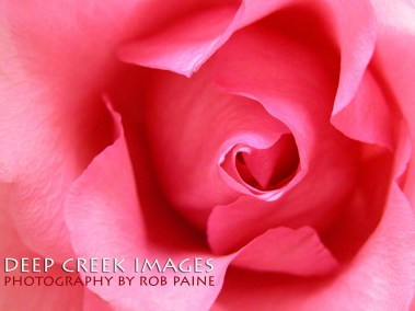 7 Photo by Rob Paine/Deep Creek Images/Copyright 2015