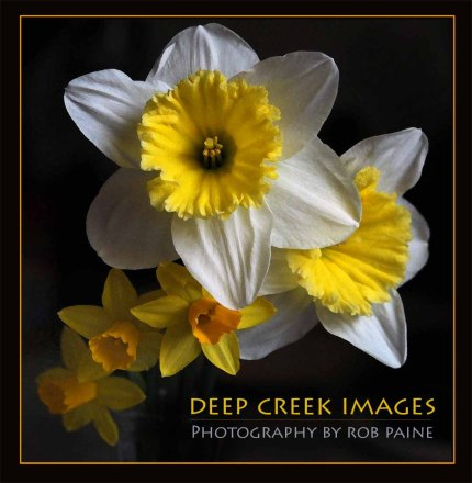 7-Photo by Rob Paine/Deep Creek Images/Copyright 2015