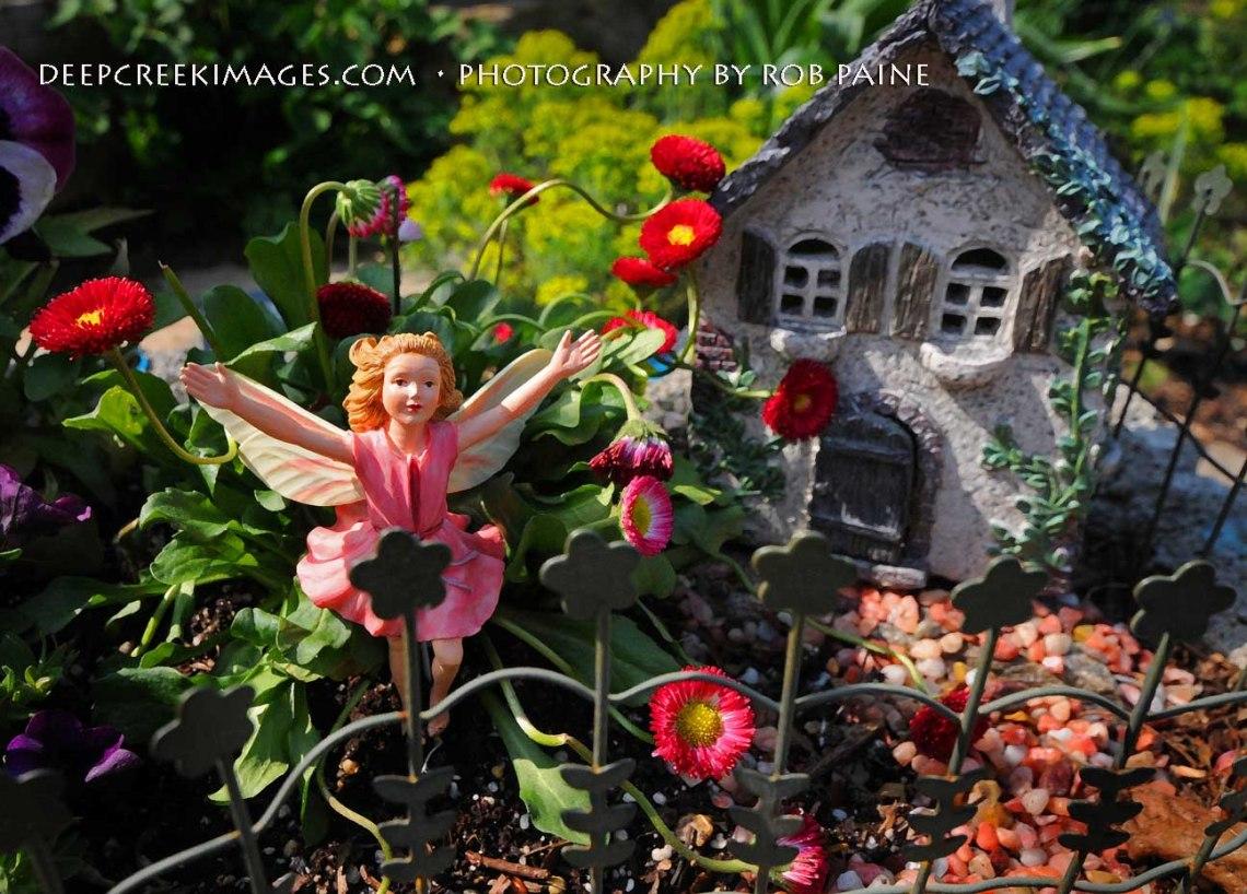 Rob Paine Fairyland at Meadowlark