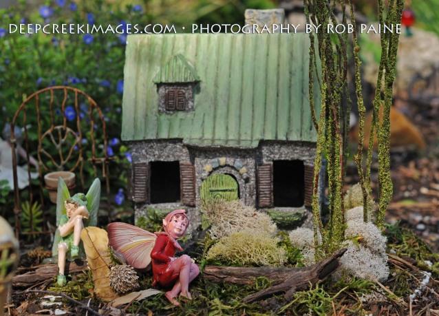 rob paine meadowlark fairy garden
