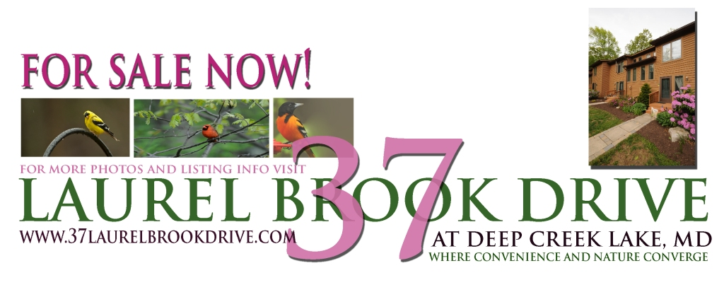 To easily visit the home page for 37 Laurel Brook Drive please double click on this photo!