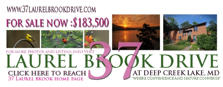Click on photo to go directly to a two minute video of 37 Laurel Brook Drive