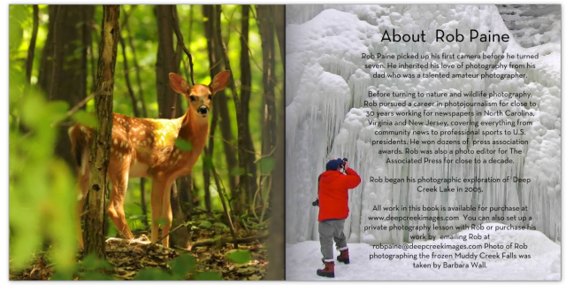"""My favorite deer photo is included in my new book """"A Place Called Deep Creek Lake."""""""